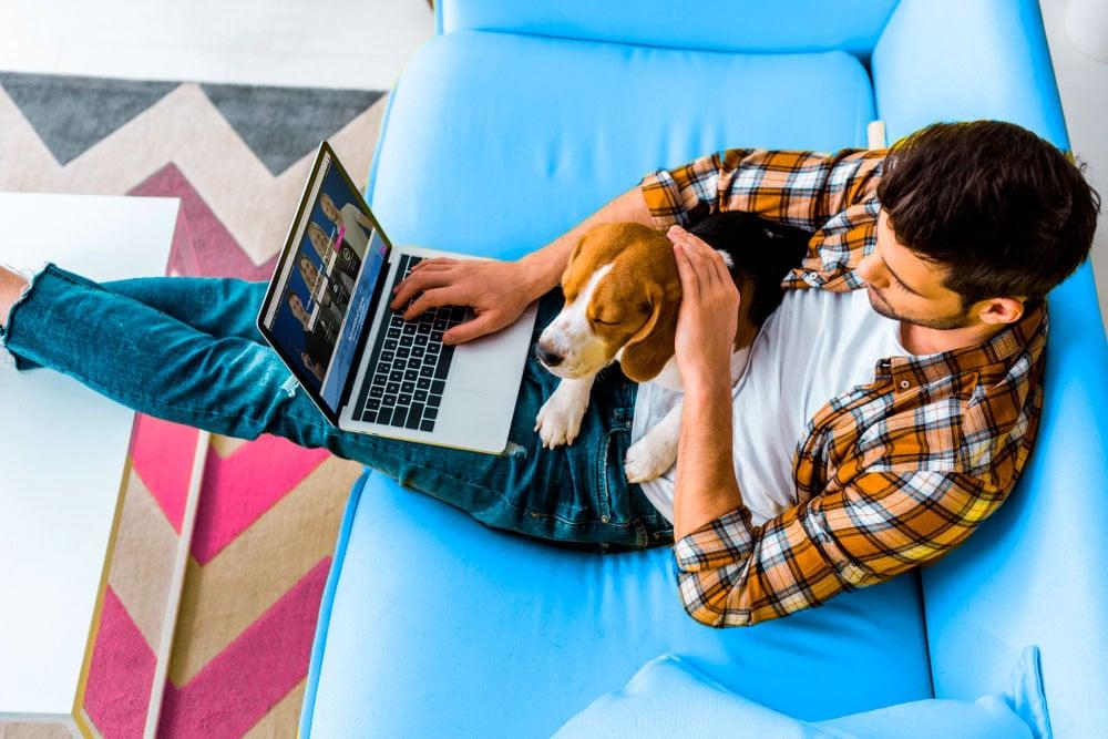 freelancer kevytyrittaja mies sohvalla koiran kanssa
