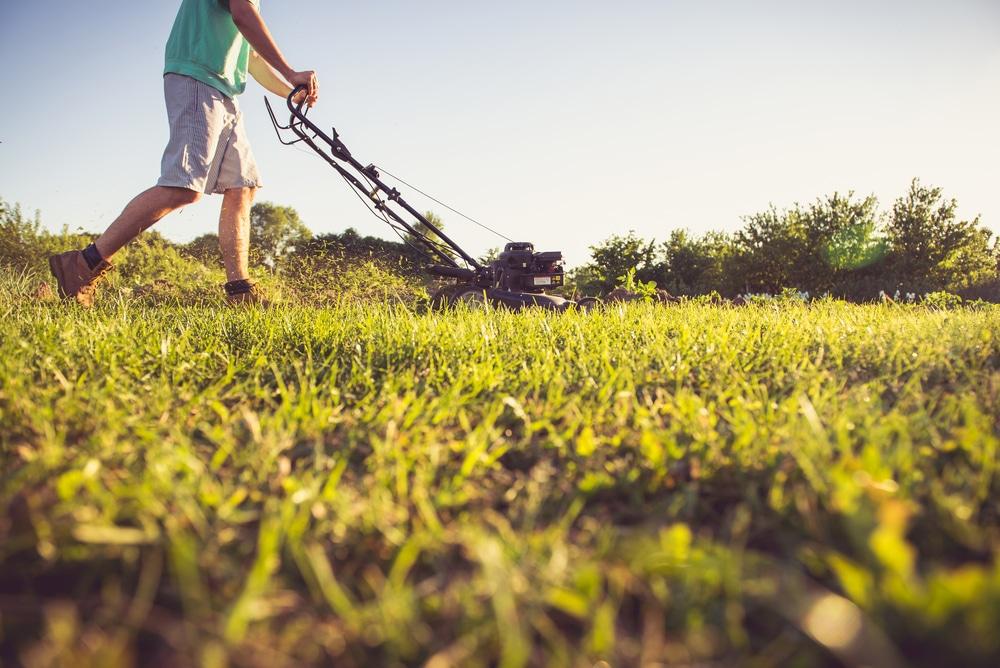 Kesätyön etsiminen. Mies leikkaa nurmikkoa.