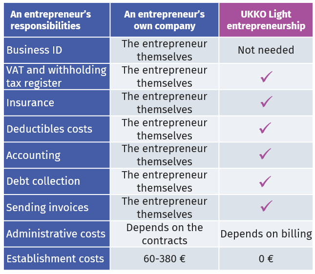 entrepreneurship and light entrepreneurship comparison table