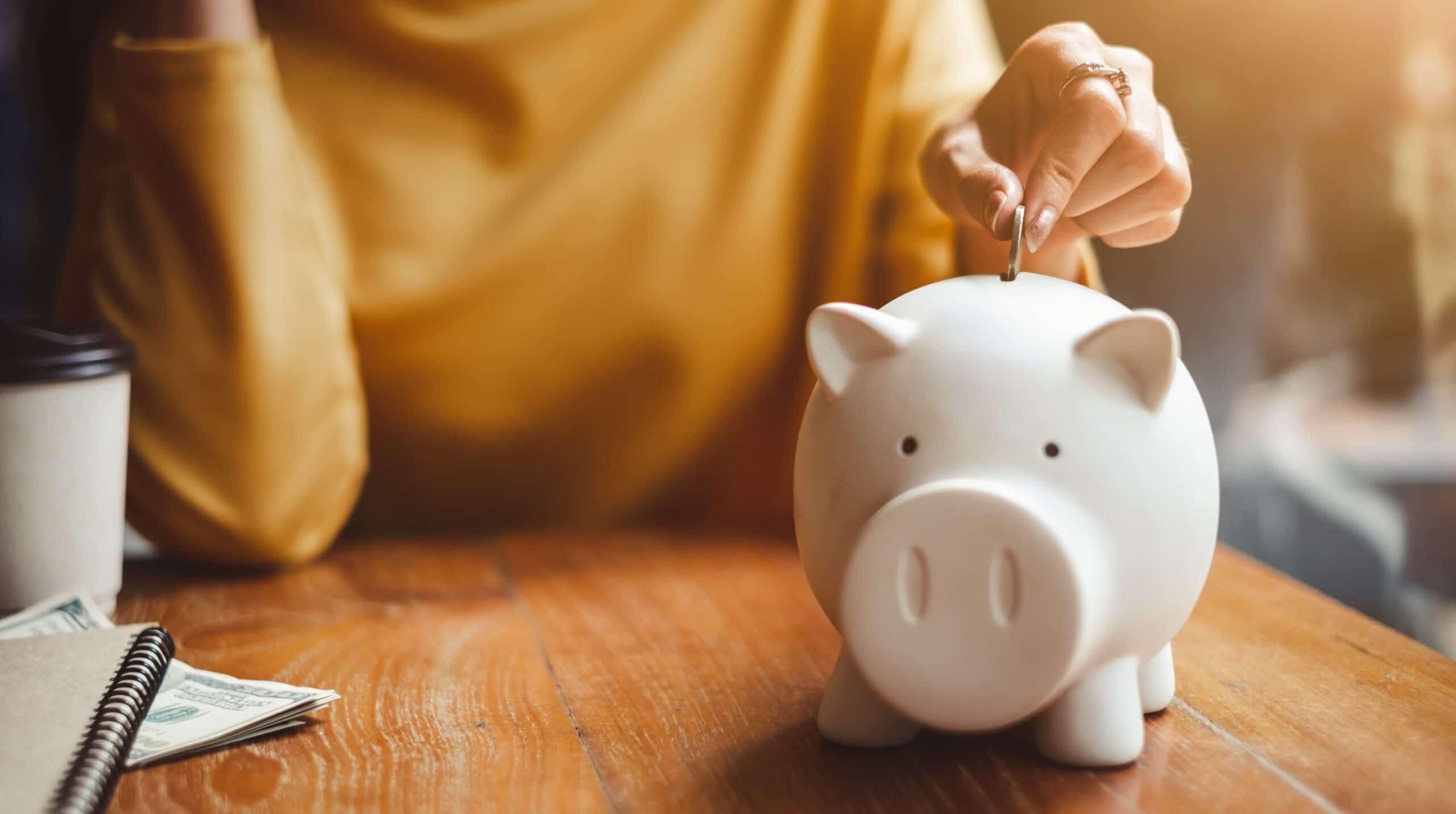 Alarajahuojennus - nainen laittaa säästyneet rahat säästölippaaseen