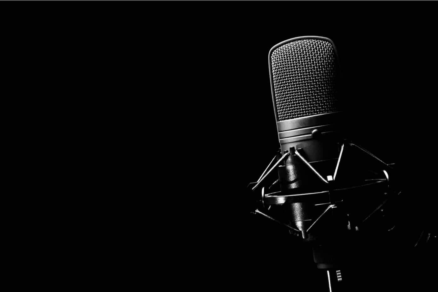 samuli koivulahti. mikrofoni.